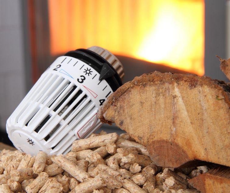 geld-sparen-brennholz-kaminofen-heizen-biofire
